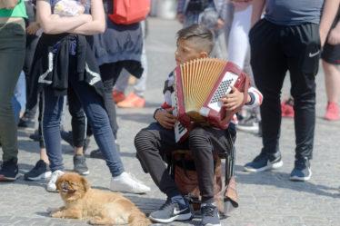 enfant jouant de l'accordéon dans la rue